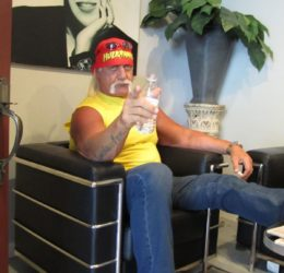 hulk hogan loyal studios